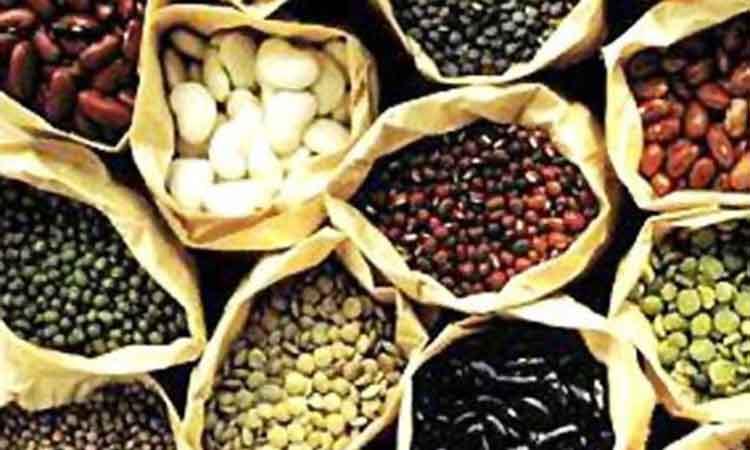Άριστη πηγή φυτικών ινών τα όσπρια