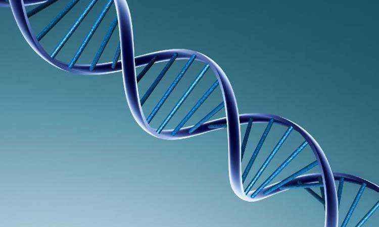 Γενετική ελπίδα για τη σχιζοφρένεια