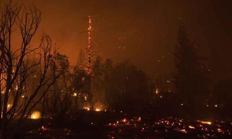 Μεγάλη πυρκαγιά στα Κουνινά Αιγιαλείας