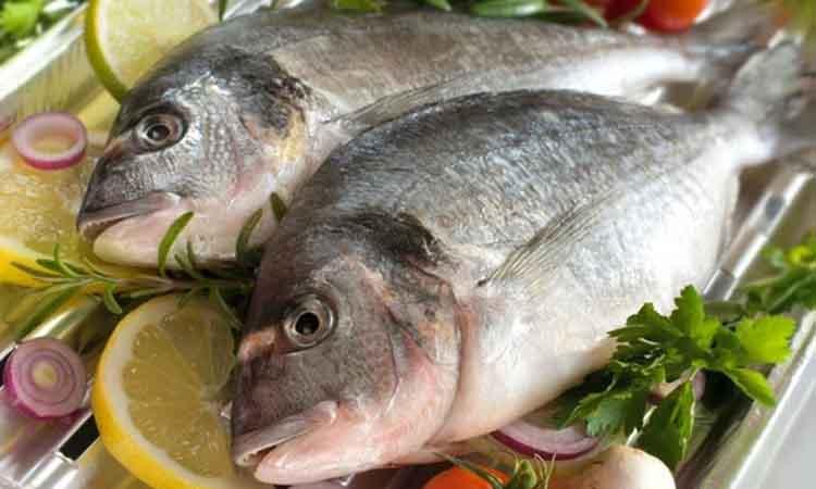 Τα ψάρια σύμμαχος καλής υγείας
