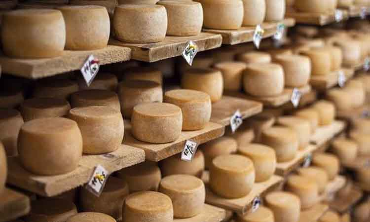 Τυρί... εργαστηρίου θέλουν να φτιάξουν βιοχάκερς στην Καλιφόρνια