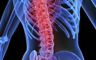 «Πάστα οστών» στη μάχη κατά της οστεοπόρωσης