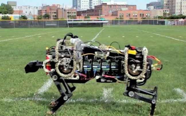 Ερευνητές του MIT «απελευθέρωσαν» ρομποτικό τσιτάχ