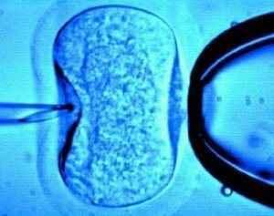 Τι να περιμένουμε από τον τομέα της εξωσωματικής γονιμοποίησης τα επόμενα χρόνια;