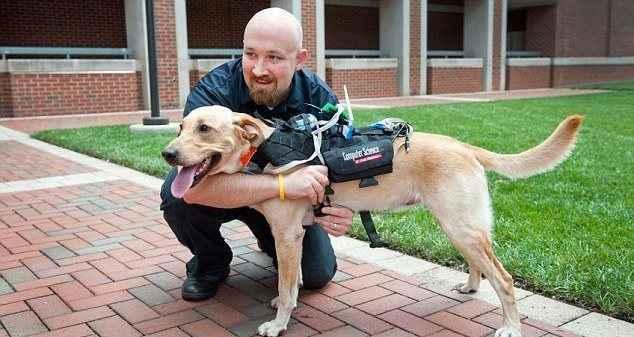 «Έξυπνη» συσκευή επιτρέπει την επικοινωνία με τους σκύλους