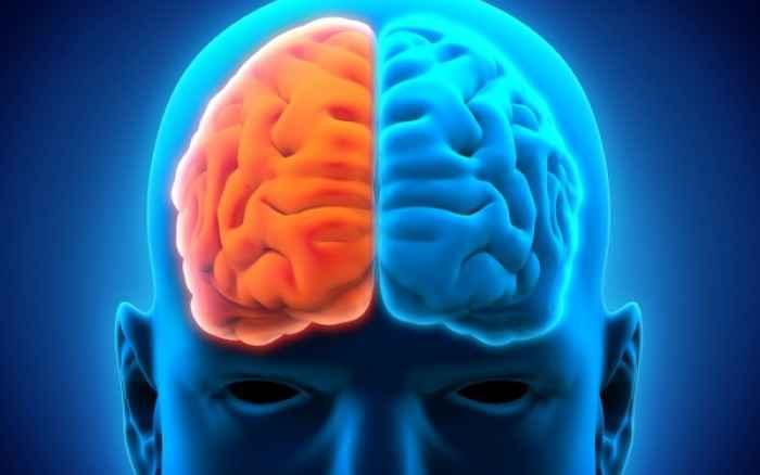Εγκέφαλος: Κάντε το τεστ και μάθετε ποιο ημισφαίριο είναι το κυρίαρχο