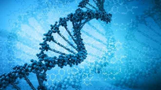 Η θνησιμότητα από τον Έμπολα εξαρτάται και από τα... γονίδια