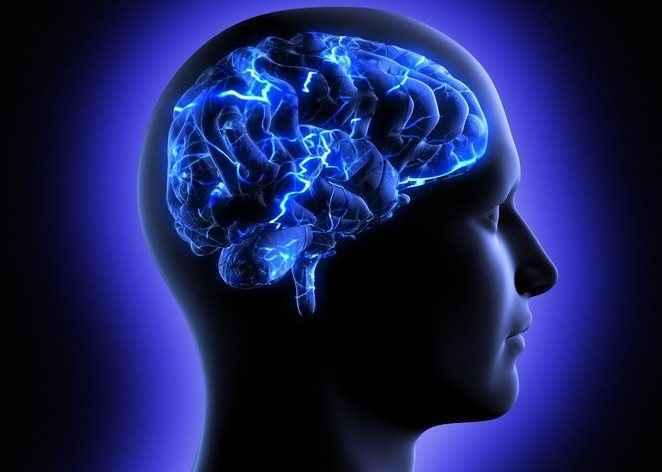 Ο εγκέφαλος αντιλαμβάνεται τις γεύσεις