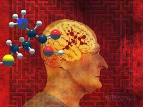 Ξεχνάτε πράγματα, φοβάστε την άνοια, το Αλτσχάιμερ; Μετρήστε την ομοκυστεΐνη (Homocysteine)