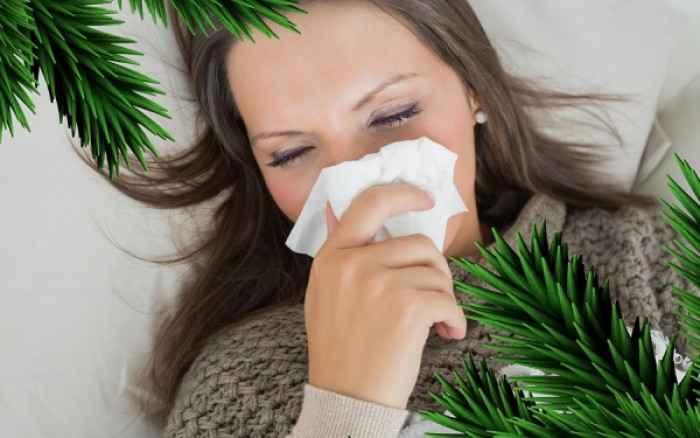 Χριστούγεννα και αλλεργίες: Τι πρέπει να προσέχετε