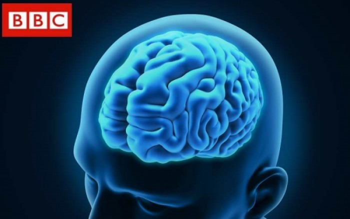 Δείτε σε τι κατάσταση βρίσκεται ο εγκέφαλός σας αυτή τη στιγμή!