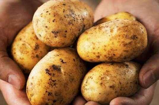 Πατάτες κατά της παχυσαρκίας