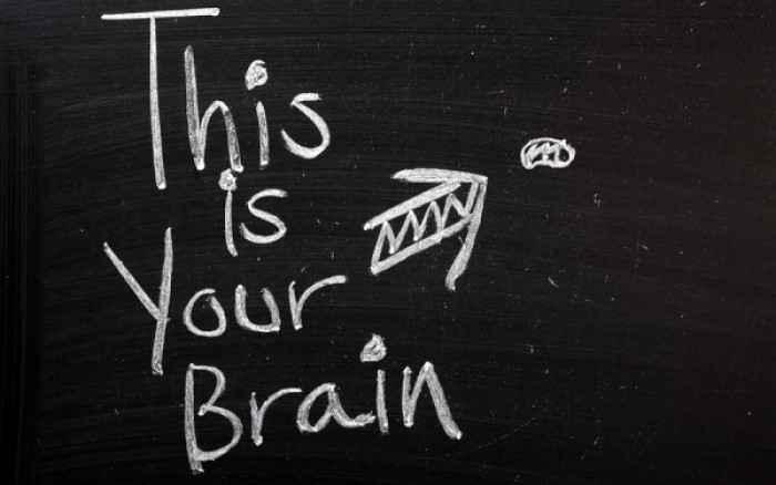 Η καταστροφική συνήθεια που συρρικνώνει τον εγκέφαλο