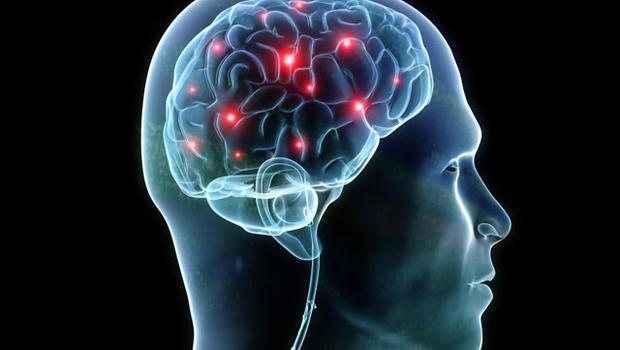 Ο εγκέφαλος ωριμάζει σε διαφορετικές ηλικίες