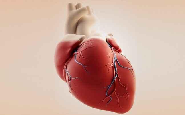 """«Όσο πιο χαμηλή η """"κακή"""" LDL χοληστερόλη, τόσο πιο καλή η υγεία της καρδιάς σου»"""