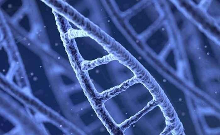 Η εκδικητική διάθεση είναι γραμμένη στα γονίδια