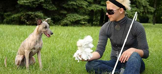 Ποιες παθήσεις μπορούν να προκαλέσουν τύφλωση;