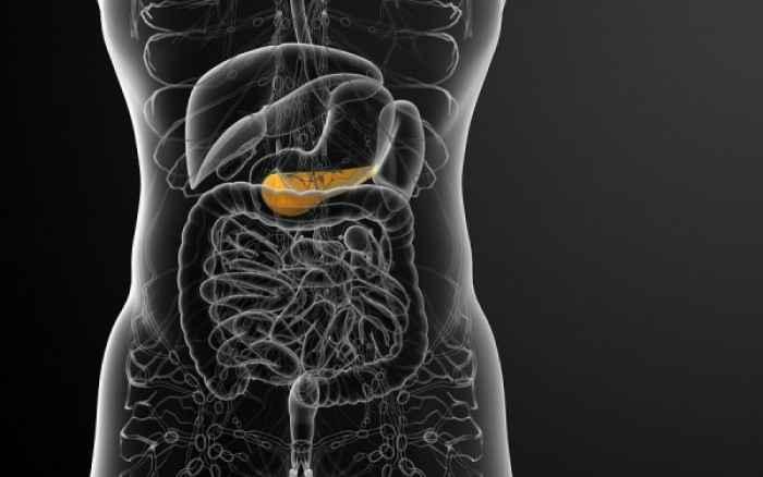 Ένα βήμα πριν την τελειοποίηση του τεστ για τον καρκίνο του παγκρέατος