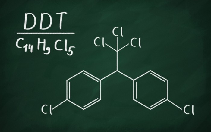 Η έκθεση στο DDT συνδέεται με τον αυξημένο κίνδυνο καρκίνου του μαστού