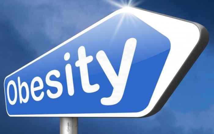 Παχυσαρκία: ο ρόλος κλειδί του λεπτού εντέρου