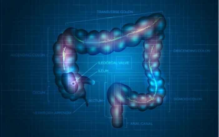 Πότε οι ενοχλήσεις στην κοιλιά δείχνουν σκωληκοειδίτιδα
