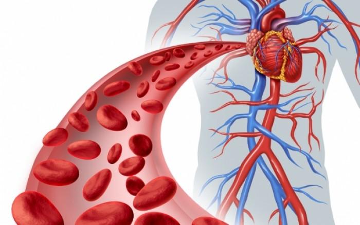 Αγγειίτιδα: Τι είναι, πότε χρειάζεται επείγουσα θεραπεία