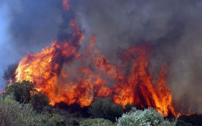 Δείτε πόσο επικίνδυνοι είναι οι ρύποι που εισπνέουμε από τις φωτιές στα δάση. Ποιοι κινδυνεύουν περισσότερο