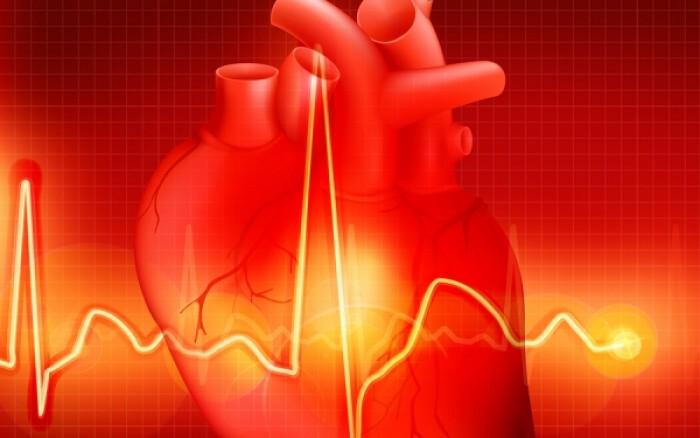 Δείτε σε 4D πώς πάλλεται η καρδιά σας!