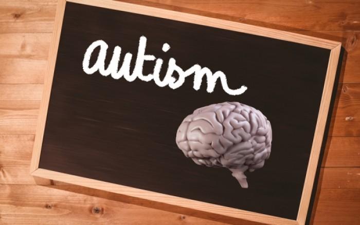 Οι επιστήμονες ανέπτυξαν μίνι εγκεφάλους ώστε να μελετήσουν τα αίτια του αυτισμού