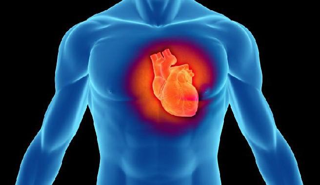 Πιο επιρρεπείς στα καρδιακά προβλήματα οι άντρες