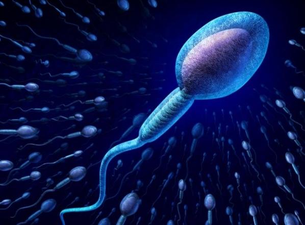 Έξι πράγματα που «σκοτώνουν» το σπέρμα