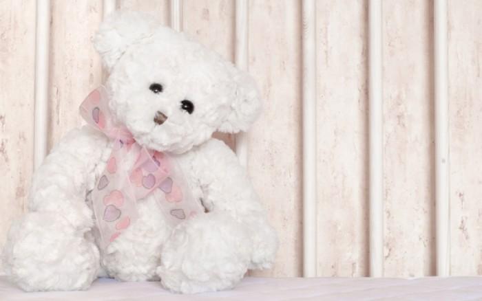 Δεν φαντάζεστε πόσα μικρόβια κουβαλούν τα αρκουδάκια των παιδιών…