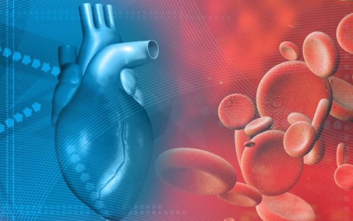 Τεστ: Υπολογίστε την πραγματική ηλικία της καρδιάς σας