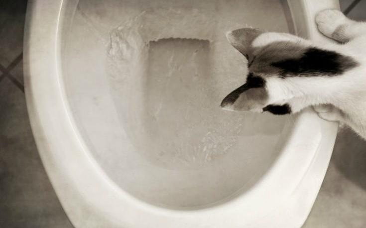 Επτά λάθη που κάνουμε στο μπάνιο μας