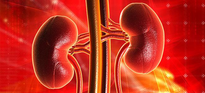 Η έλλειψη άσκησης αυξάνει τον κίνδυνο χρόνιας νεφρικής νόσου