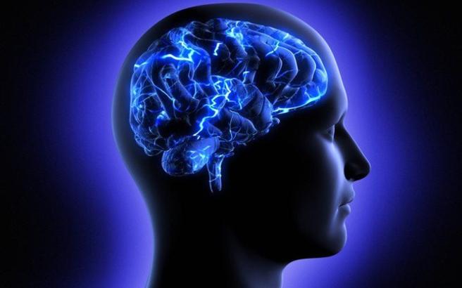 Έξι αλήθειες για τον εγκέφαλο