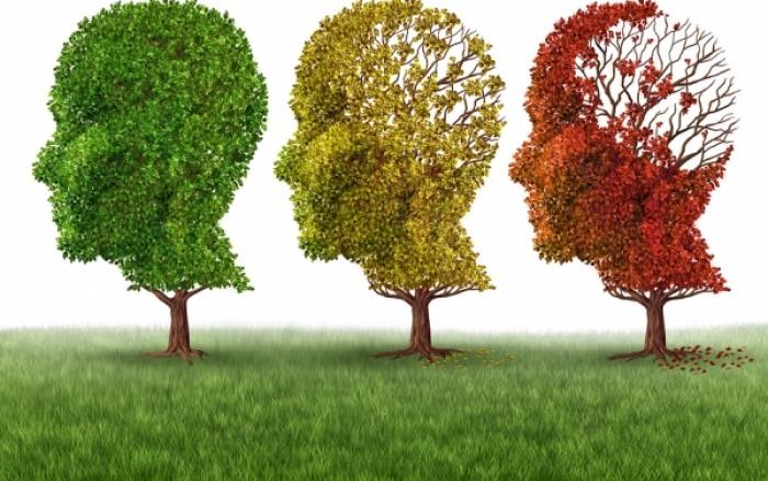 Προστατευτείτε από το Αλτσχάιμερ τρώγοντας...