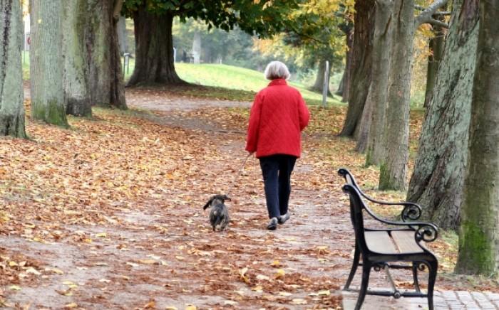Βόλτα με τον σκύλο: Πόσο αυξάνει το προσδόκιμο ζωής