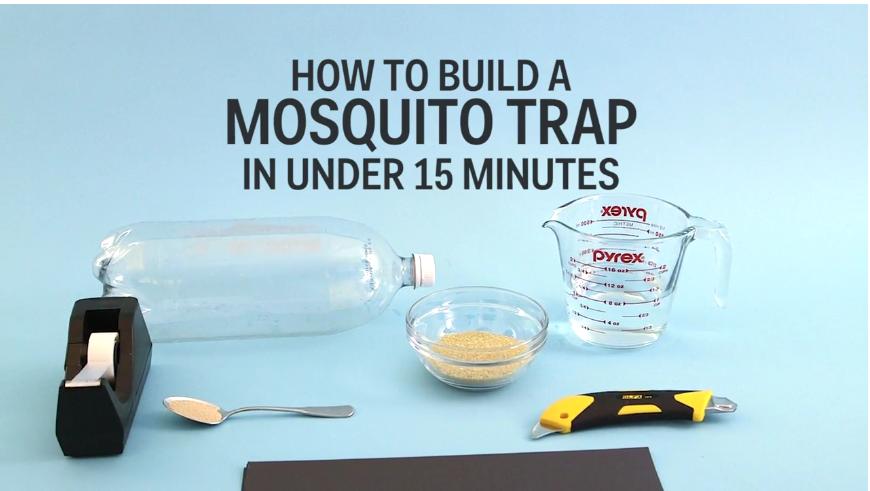Πως να φτιάξετε μια παγίδα για τα κουνούπια σε λιγότερο από 15 λεπτά!