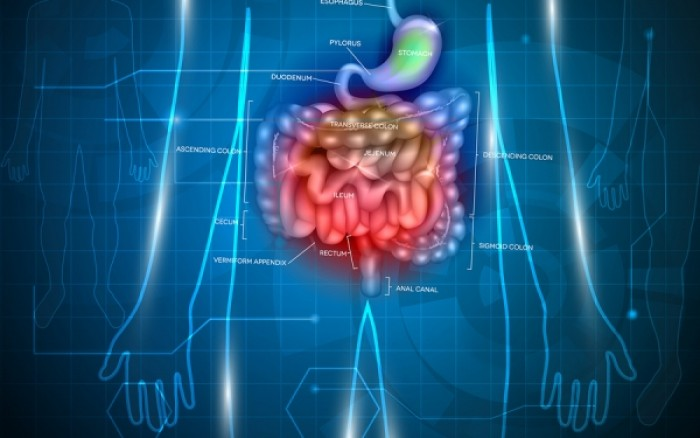 Καρκίνος παχέος εντέρου: Ανησυχητική αύξηση των περιστατικών στις μικρές ηλικίες