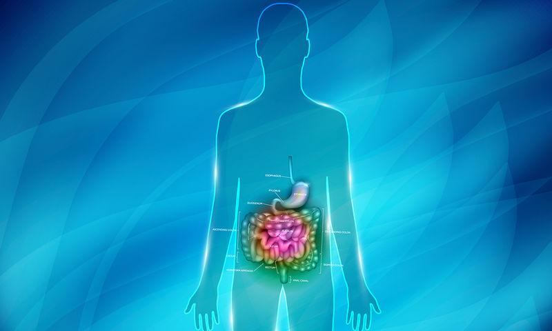 Ελικοβακτηρίδιο του πυλωρού Ένα μικρόβιο ανθεκτικό ακόμη και στο οξύ του στομάχου