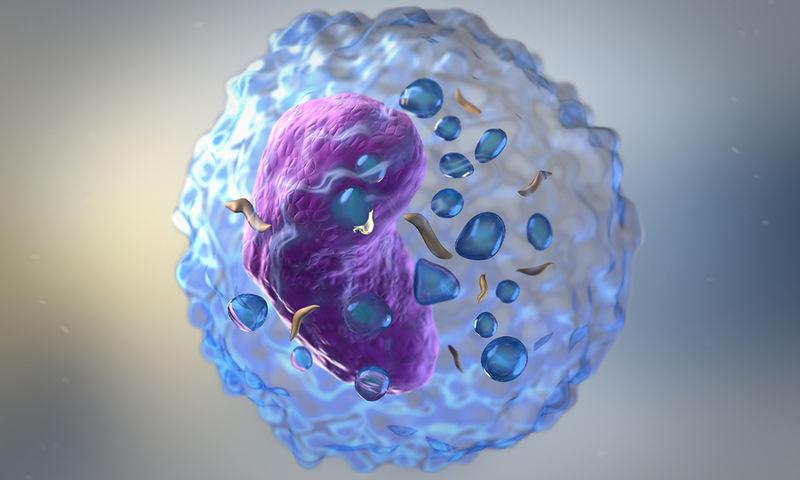 Οι επιστήμονες εξαπολύουν κύτταρα φονιάδες για την αντιμετώπιση της λευχαιμίας