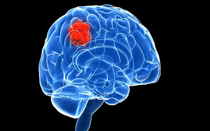 Τι συμβαίνει στον εγκέφαλο μας όταν μαθαίνουμε κάτι
