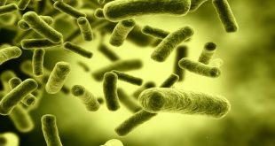Οι ειδικοί προειδοποιούν για την αύξηση των υπερμικροβίων στην Ευρώπη