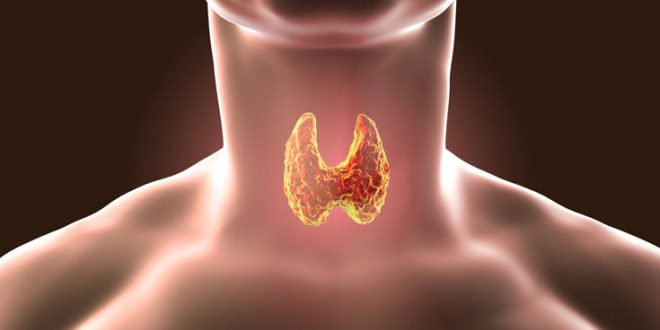 Αφαίρεση θυρεοειδούς μέσα από το στόμα