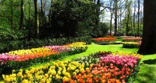 Το «Πάρκο Λουλουδιών» στην Ολλανδία μάγεψε τους καθολικούς