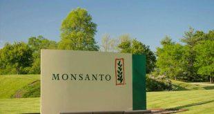 Γαλλικό εφετείο δικαιώνει για τρίτη φορά αγρότη που έχει προσφύγει κατά της Monsanto