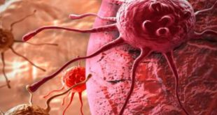 «Η λύση στη θεραπεία του καρκίνου θα δοθεί μέσα από την ανοσοθεραπεία»