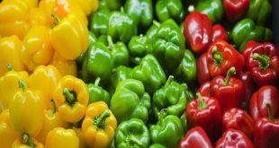 Οι διατροφικές ιδιότητες που έχουν οι χρωματιστές πιπεριές