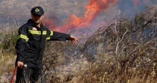 Μεγάλη φωτιά σε δασική έκταση στα Μέγαρα